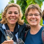 Weinwanderung Herbst 2014