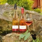 Roséweine, am liebsten frisch und gekühlt
