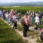 Weber's Weinwanderungen